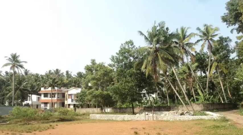 House Plot 15 Cents For Immediate Sale