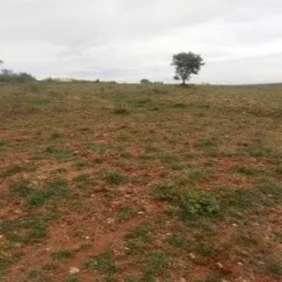 Site for sale in Andrahalli