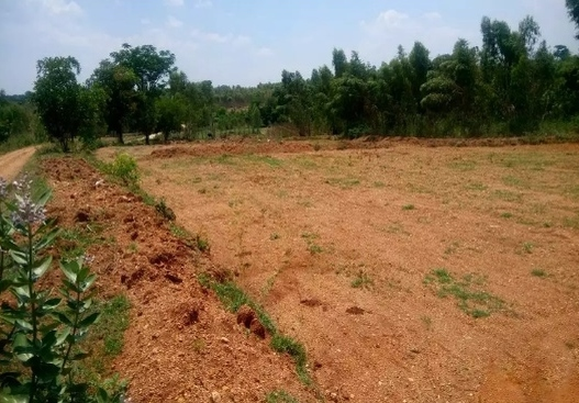2 acre agriculture farm land for sale